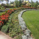پارک هامون,پارک هامون البرز,پارک هامون در کرج