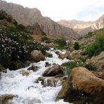 جاذبه های گردشگری کهگیلویه و بویراحمد,چشمه ميشي,چشمه میشی