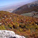 جنگل و آبشار نام نیک سمنان
