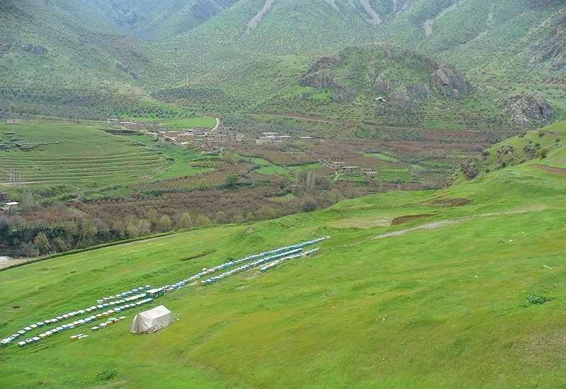 جاذبه های گردشگری استان کرمانشاه,چشمه سیلی,دره گنجگاه