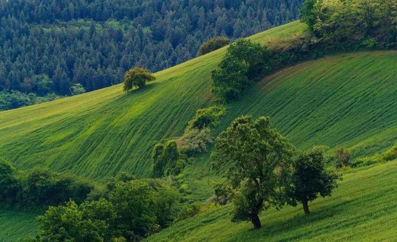 تپه های هزار پیچ,تپه هزار پیچ,تپه هزار پیچ در استان گلستان