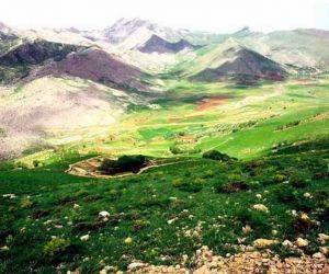جاذبه های گردشگری کردستان,کوه کوچسار,کوه کوچسار در استان کردستان