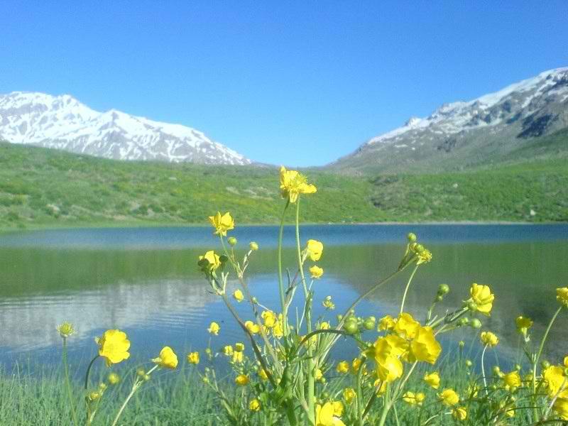 جاذبه های گردشگری کهگیلویه و بویراحمد,درياچه كوه گل,دریاچه کوه گل
