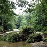 آبشار پلنگ دره,جاذبه هاي گردشگري مازندران,جاذبه های گردشگری مازندران