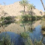 چشمه سبز پوشان حاجی آباد