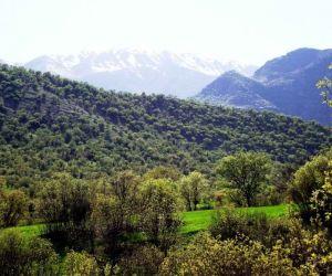 تنگ شبیخون,تنگ شبیخون خرم آباد,تنگ شبیخون در استان لرستان
