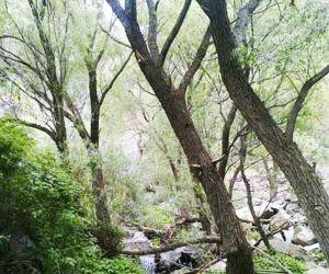 آبشار دومانچال,آبشار دومانچال رزجرد,آبشار دومانچال قزوین