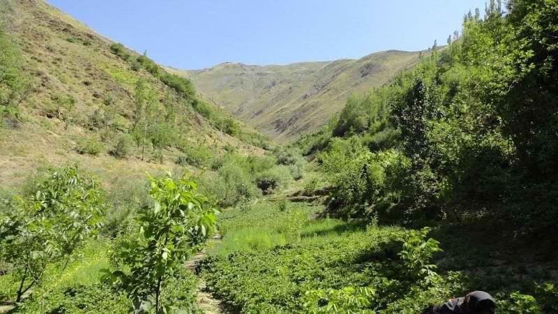 روستای بیساران سنندج