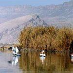 چشمه جوشک شیراز