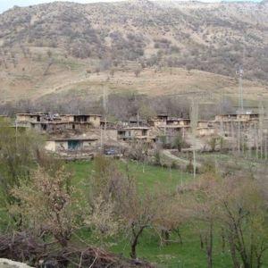 امامزاده شاه قاسم,جاذبه های گردشگری شهر یاسوج,جاذبه های گردشگری شهرستان یاسوج