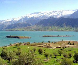 پرندگان تالاب میانگران,تالاب میانگران,تالاب میانگران خوزستان