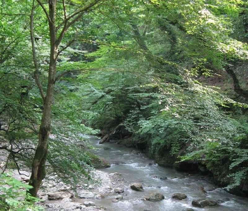 شیرین رود در استان مازندران,شیرین رود دودانگه,شیرین رود ساری