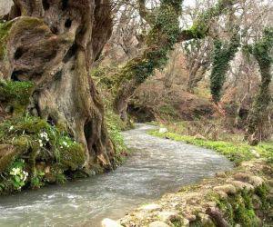 جاذبه های گردشگری مازندران,شیرین رود,شیرین رود خرم آباد