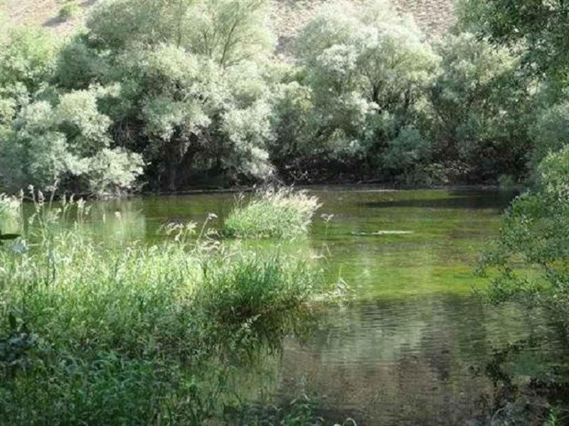 تالاب گهر کوچک در استان لرستان,تالاب گهر لرستان,جاذبه هاي گردشگري لرستان