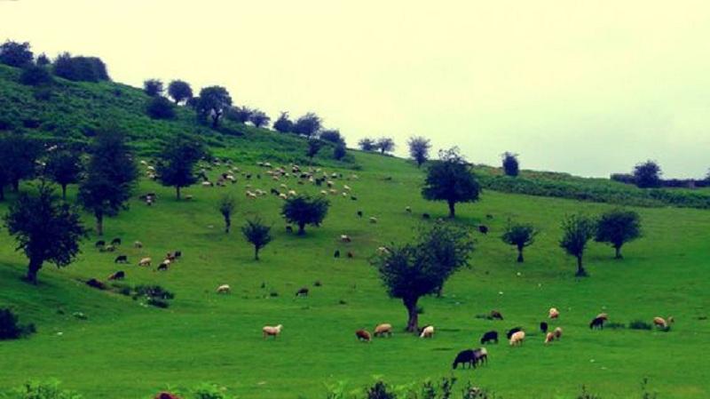 روستای جهان نما در استان گلستان,روستای جهان نما در گلستان,روستای جهان نمای کردکوی