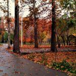 باغ فاتح جهانشهر کرج,باغ های جهانشهر,باغ های محله جهانشهر
