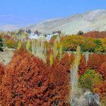 منطقه کردان کرج