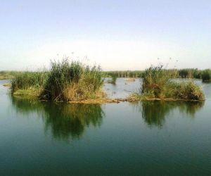 تالاب هور,تالاب هورالعظیم خوزستان,تالاب هورالعظیم در خوستان