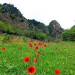 روستای سیاهکشان گیلان,عکس روستای سیاهکشان