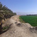 تل خندق برازجان بوشهر