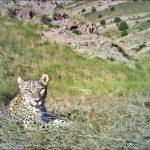 آدرس پارک ملی تندوره,پارك ملي تندوره درگز,پارک ملی تندوره خراسان