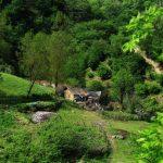 آب گرم مشه سویی,آدرس جنگل مشه اردبیل,جاذبه گردشگری اردبیل