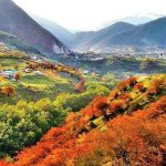 آدرس روستای لاویج,تور ساری گردی,جاذبه های گردشگری مازندران