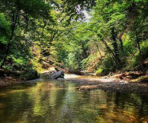 آب آبشار آهکی اسکلیم,آبشار آهکی اسکلیم,آبشار اسکلیم رود کجاست