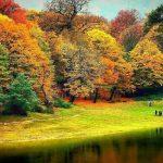 جنگل توسکستانی گرگان