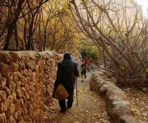 آدرس روستای قطرم,تاریخچه روستای قطرم,تور یزد گردی